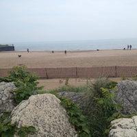 Photos at Evanston Dog Beach - Beach in Evanston