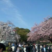 3/17/2013 tarihinde hiro i.ziyaretçi tarafından Ueno Park'de çekilen fotoğraf