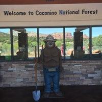 3/26/2016にDiane T.がCoconino National Forestで撮った写真
