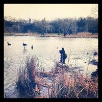 eglinton flats fishing