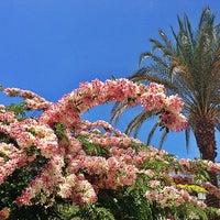 Das Foto wurde bei Red Sea von Рам am 6/14/2013 aufgenommen