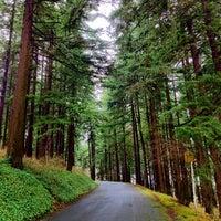 2/11/2012 tarihinde Rudolph v.ziyaretçi tarafından Mt. Tabor Park'de çekilen fotoğraf