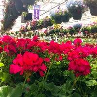 Photo Taken At Heartland Nursery Amp Gardening Center By Leslie K On