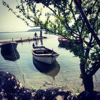 5/22/2013 tarihinde Ayla S.ziyaretçi tarafından Sapanca Sahili'de çekilen fotoğraf
