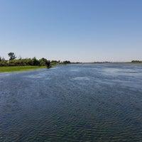 shoreline big 5