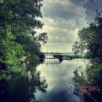 6/27/2013にJonas B.がNaturschutzgebiet Unterer Greifenseeで撮った写真