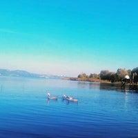 10/27/2012 tarihinde H&Gziyaretçi tarafından Sapanca Sahili'de çekilen fotoğraf