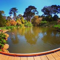 Снимок сделан в San Francisco Botanical Garden пользователем djb 4/2/2013