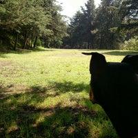 8/8/2015에 Moy R.님이 Smart Dog에서 찍은 사진