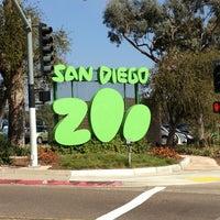3/30/2013 tarihinde Şeyma R.ziyaretçi tarafından San Diego Hayvanat Bahçesi'de çekilen fotoğraf