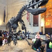 Foto scattata a American Museum of Natural History da Diego A. il 5/11/2013