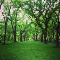 7/8/2013 tarihinde Neue Galerie N.ziyaretçi tarafından Central Park'de çekilen fotoğraf