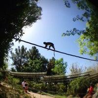 Снимок сделан в Phoenix Zoo пользователем Sean H. 4/28/2013