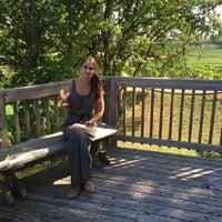 Das Foto wurde bei Yamhill Valley Vineyards von Olga A. am 8/20/2017 aufgenommen