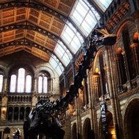 Foto scattata a Museo di storia naturale da Kelly J. il 5/24/2013