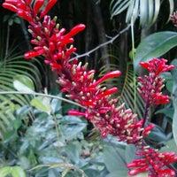 Das Foto wurde bei Sunken Gardens von Dawn L. am 1/13/2013 aufgenommen