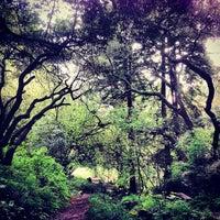 Das Foto wurde bei Golden Gate Park von Josiah R. am 4/5/2013 aufgenommen