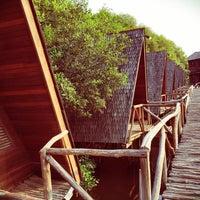 Taman Wisata Alam Hutan Mangrove Pik
