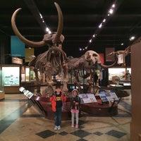 Das Foto wurde bei University of Michigan Museum of Natural History von Scott S. am 3/7/2015 aufgenommen
