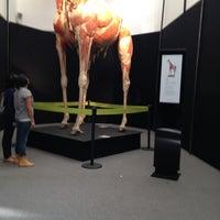 Das Foto wurde bei Universum, Museo de las Ciencias von Fernando P. am 10/7/2012 aufgenommen
