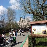 Foto scattata a Parco Faunistico Le Cornelle da Davide B. il 4/13/2013