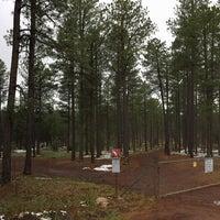 5/9/2015にRichie A.がCoconino National Forestで撮った写真