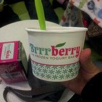 Brrrberry Frozen Yogurt Dessert Shop In Jacksonville