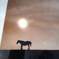 Foto tirada no(a) Flying Goat Cellars Tasting Room por Chris L. em 11/23/2012