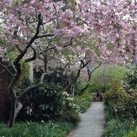Das Foto wurde bei The Garden at St. Luke in the Fields von Becca D. am 4/24/2013 aufgenommen