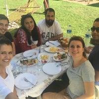 8/13/2017にMelike K.がPolonezköy Yıldız Piknik Parkıで撮った写真