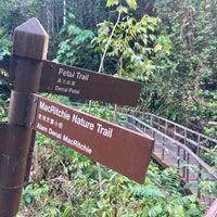 Foto scattata a MacRitchie Nature Trail da gerard t. il 10/12/2016