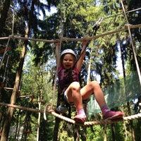 Снимок сделан в Веревочный парк «Tree To Tree» пользователем Alexandra K. 6/8/2014