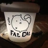 Снимок сделан в Fat Cat пользователем Elena S. 2/19/2013