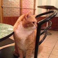 Снимок сделан в Пышечная пользователем Dmitrii K. 11/29/2012