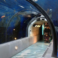 Aquarium du Québec - Saint Louis - 1675 Avenue des Hôtels