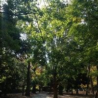 11/24/2012にHidemi M.が蘆花恒春園 (蘆花公園)で撮った写真