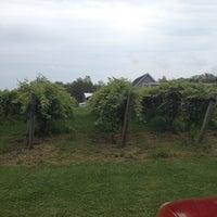 7/28/2013 tarihinde Jen L.ziyaretçi tarafından Sunset Meadow Vineyards  SMV'de çekilen fotoğraf