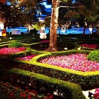 รูปภาพถ่ายที่ Wynn Las Vegas โดย DinoAlanso เมื่อ 3/8/2013