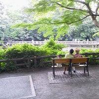 6/28/2013にMasatoshi K.が井の頭恩賜公園で撮った写真
