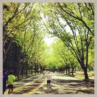4/27/2013にMasa T.が駒沢オリンピック公園で撮った写真