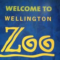 10/29/2012 tarihinde Jules S.ziyaretçi tarafından Wellington Zoo'de çekilen fotoğraf