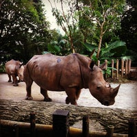 Photo prise au Singapore Zoo par Maggie W. le2/15/2013