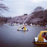 3/20/2013にyoshikenが井の頭恩賜公園で撮った写真