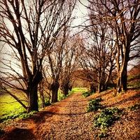 Снимок сделан в Parco Regionale dell'Appia Antica пользователем Eraldo S. S. 1/6/2013
