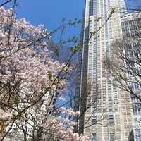 3/16/2013にs t.が新宿中央公園で撮った写真