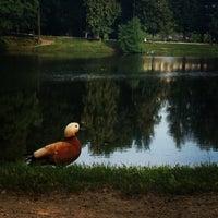 Снимок сделан в Лефортовский парк пользователем Pryanik 6/19/2013