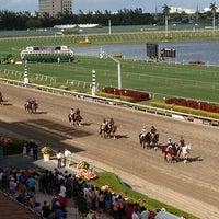 Gulfstream racing /u0026 casino red white blue slot machine online