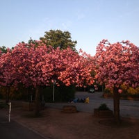 5/5/2013 tarihinde Андрей И.ziyaretçi tarafından Britzer Garten'de çekilen fotoğraf