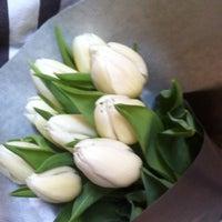bloemen maenhout gent
