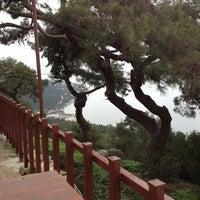 3/9/2013 tarihinde Sevim K.ziyaretçi tarafından Yücetepe Kır Gazinosu'de çekilen fotoğraf